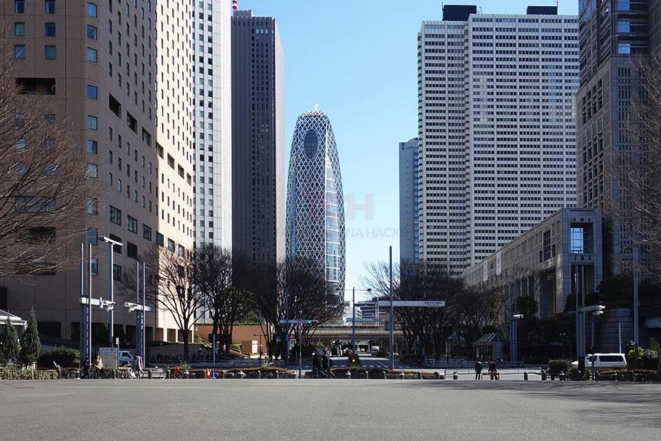 【那你呢あなたはロケ地】新宿中央公園